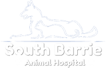 South Barrie Animal Hospital Logo